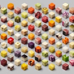 Rice-cube-food